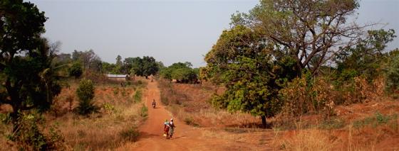 Savanne in Afrika